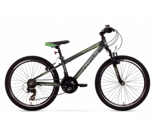 Bicicleta copii Arkus Beryl 240 Gri 2016