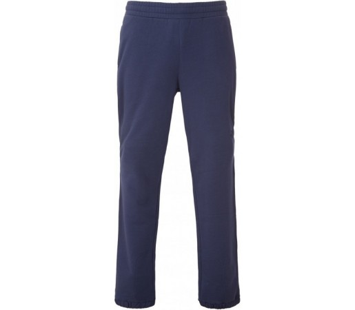Pantaloni The North Face M Regular Sweat Albastri