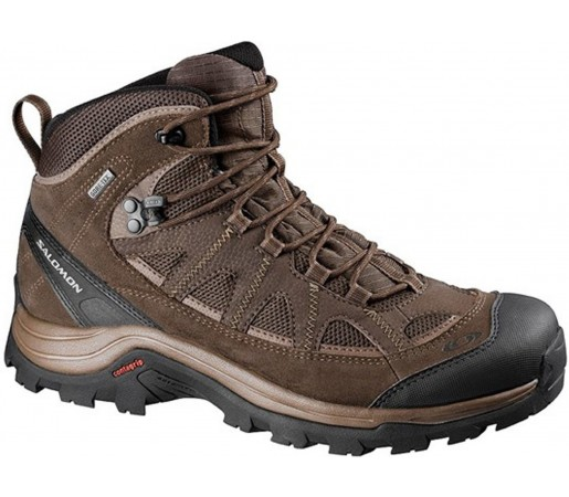 Incaltaminte Salomon Authentic GTX Maro 2013