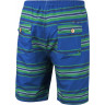 Boardshort Protest Oscar Blue- Green