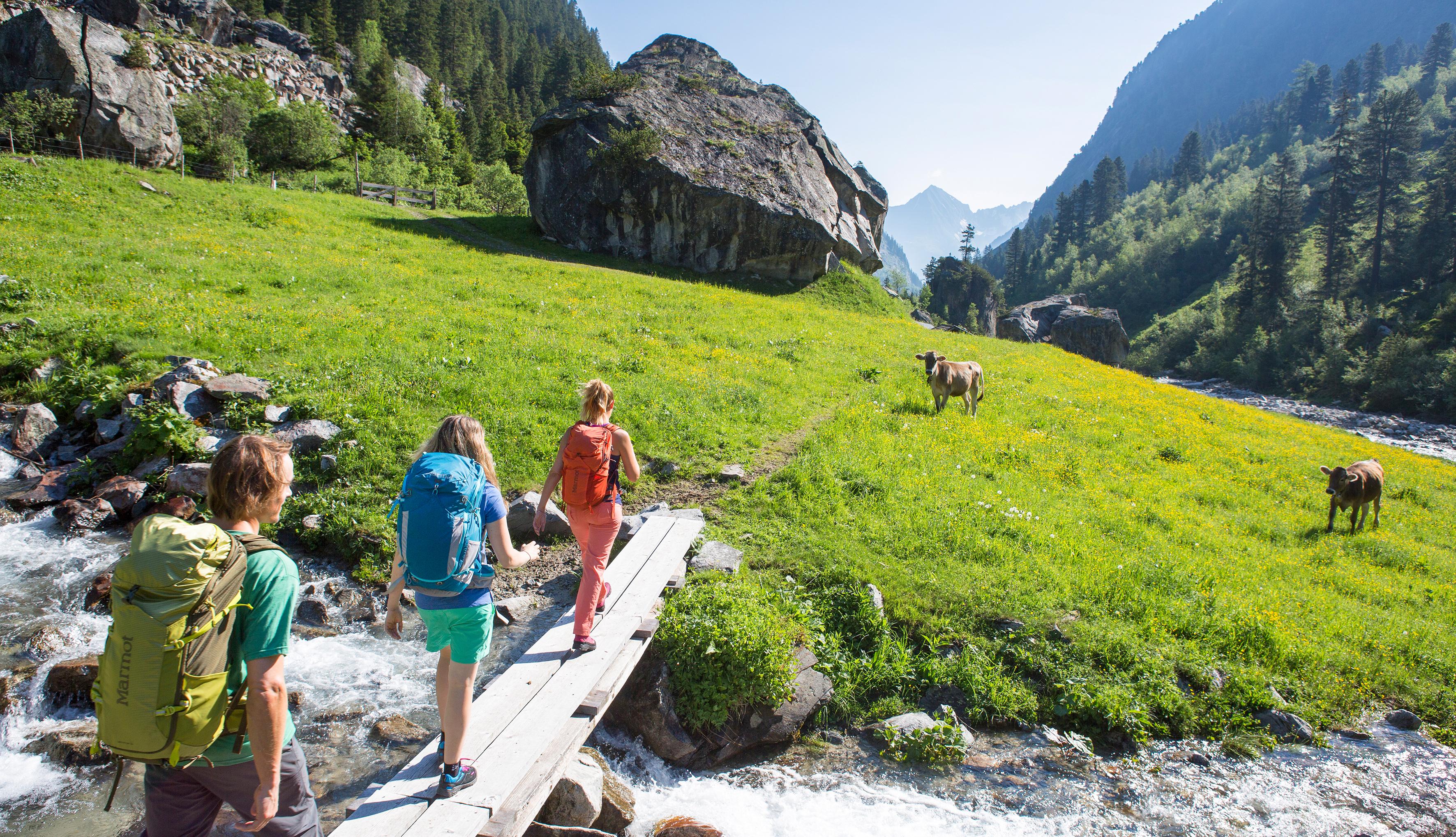Marmot - brandul născut cu gândul la Alaska