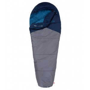 Sac De Dormit The North Face Aleutian 20/7 Gri / Albastru