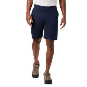 Pantaloni Scurti Casual Barbati Columbia Brentyn Trail Cargo Short Albastru