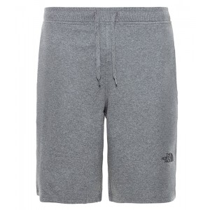 Pantaloni scurti Barbati The North Face Graphic Light Gri