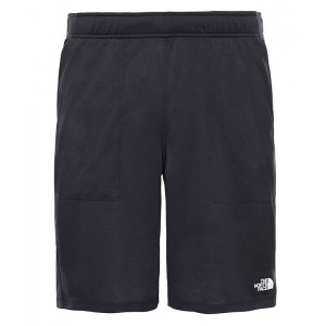 Pantaloni scurti Barbati Alergare The North Face Train N Logo Lite Negru
