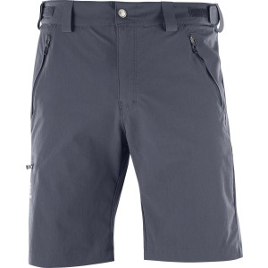 Pantaloni Scurti Hiking Salomon Wayfarer M Gri Inchis