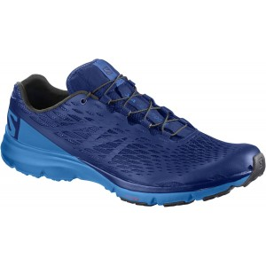 Incaltaminte Hiking Salomon Xa Amphib M Albastru