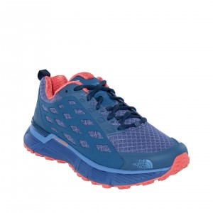 Incaltaminte alergare The North Face Endurus TR W Albastra