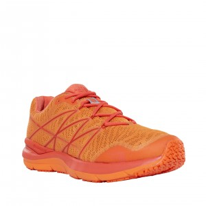 Incaltaminte alergare The North Face Ultra Cardiac II M Portocalie